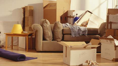 woningontruiming n, woningontruiming, boedelontruiming, ontruimen, ontruiming, huis, woning, boedel, inboedel, meubels, overlijden, woningontruiming, dronten